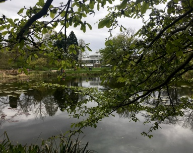 The Palm House from a distance.