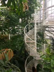 Spiral staircase to the top of the Palm House.